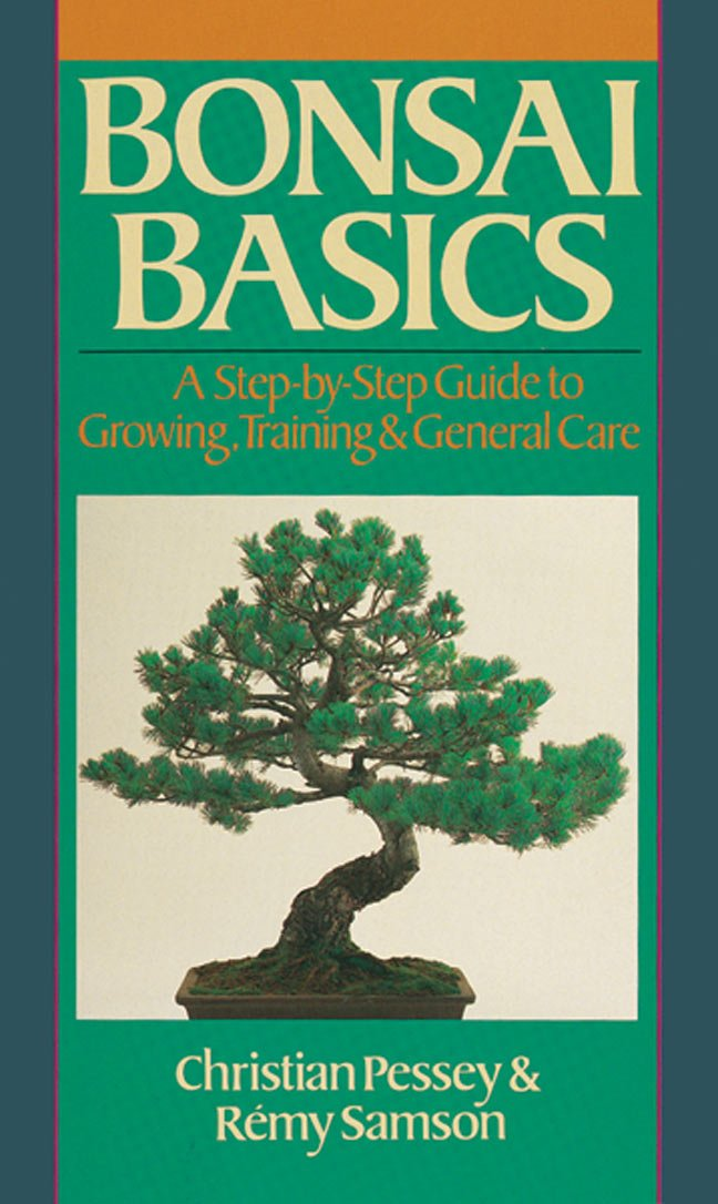 Bonsai Basics  A Step By Step Guide To Growing Training And General Care  Our Garden Variety