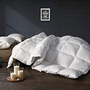 APSMILE Luxurious Twin Size All Seasons Goose Down Comforter - Ultra-Soft Egyptian Cotton, 750+ Fill Power Lightweight Fluffy Middle Warmth Duvet Insert, Solid White