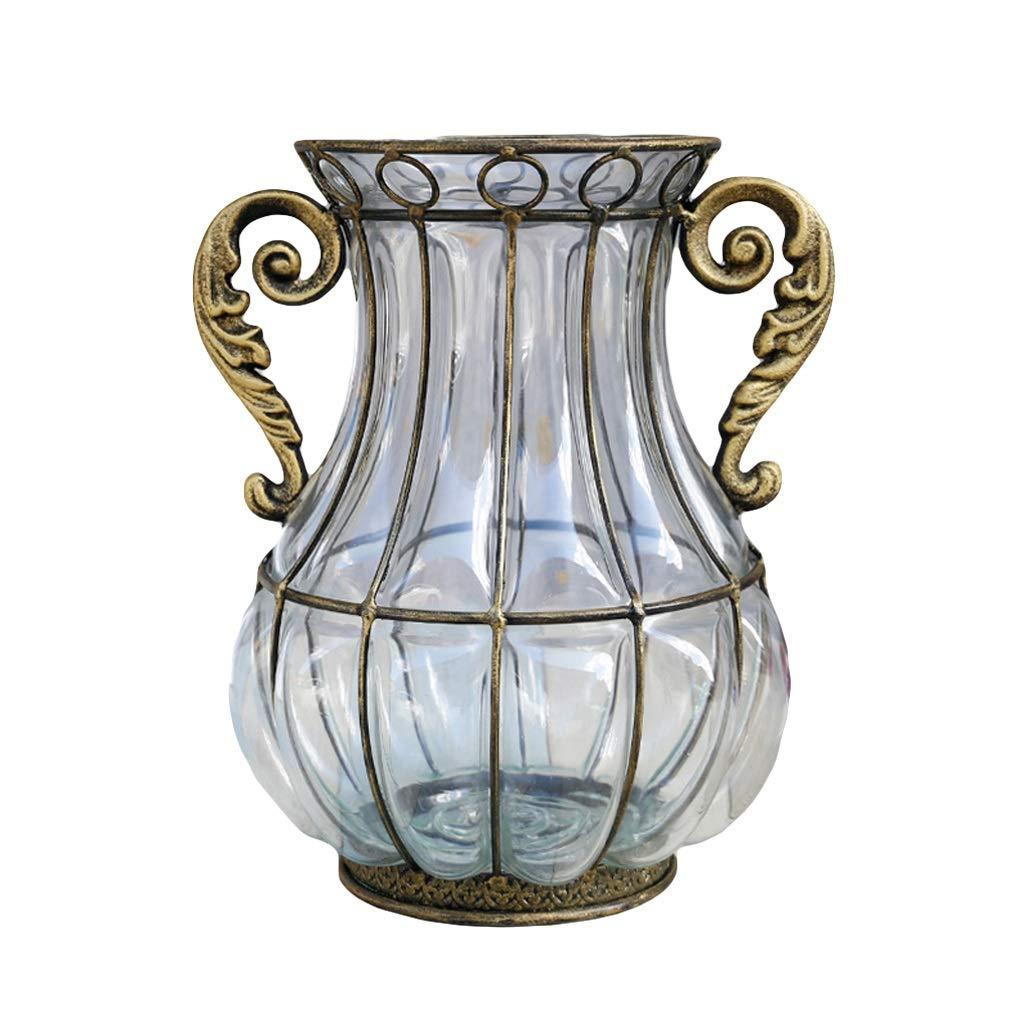 ドライフラワー水耕栽培植物のためのガラスの花瓶花瓶現代水差し、ホームオフィスのための理想的な装飾と結婚披露宴のためのギフト、3色オプションの両耳29 cm (Color : Clear) B07SXKL434 Clear