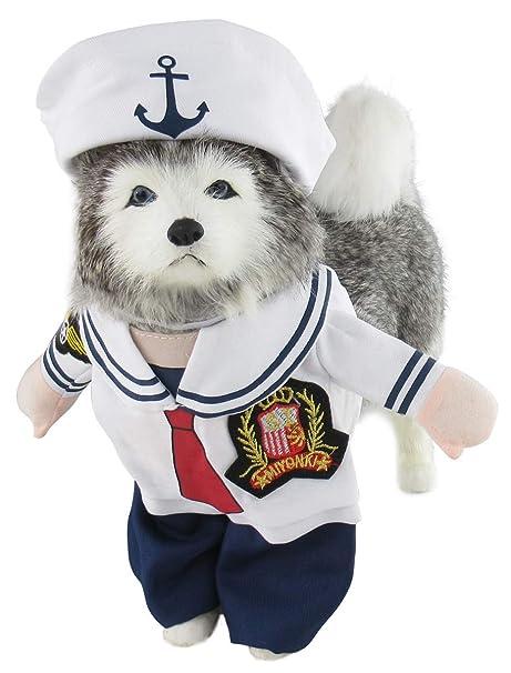 Mombebe - Disfraz de Pirata para Perro, con Sombrero: Amazon.es ...