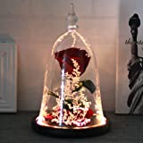 Handmade Rose in Glass Dome, DDSKY Beauty and The Beast Enchanted Preserved Rose with LED Light in Glass Dome on Wood Base, 1