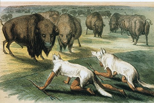 Posterazzi Native Americans Camouflaged for Buffalo Hunt Poster Print by Science Source (24 x 18) Varies