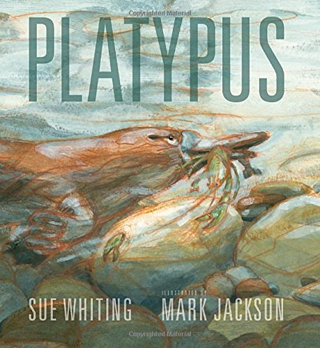 Platypus Sue Whiting