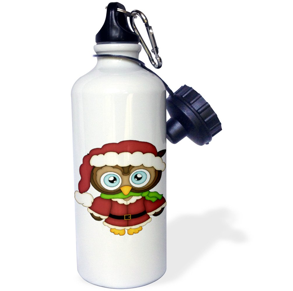 3dRose wb/_217078/_1Cute Christmas Owl In A Santa Outfit Illustration Sports Water Bottle 21 oz Multicolor