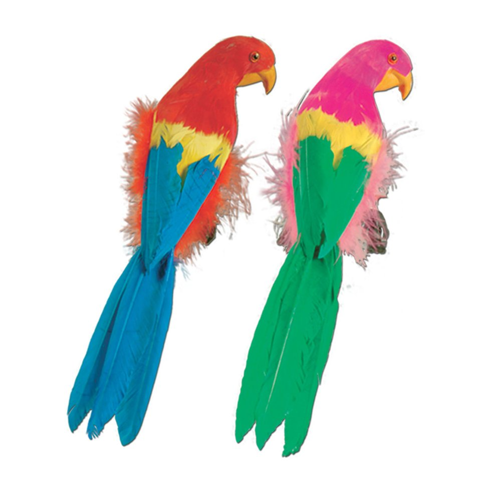 Feathered pappagallo, 30,5 cm (1 Pkg) -6pk