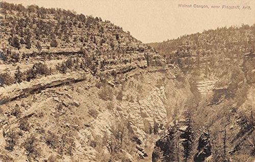 Flagstaff Arizona Walnut Canyon Real Photo Antique Postcard K60048 (Arizona Antique Walnut)