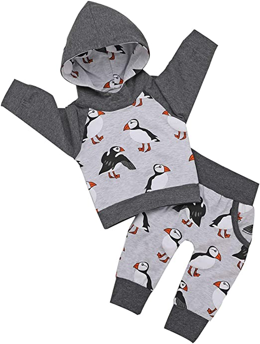 Pants Toddler Infant Outfit Set 2Pcs Baby Boys Dinosaur Long Sleeve Hoodie Tops Sweatsuit