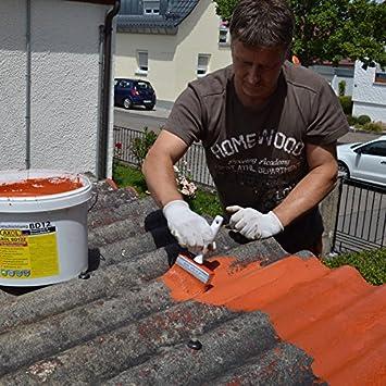 Geliebte Dachsanierung, Dachbeschichtung zum Abdichten von Eternit-Platten KF28