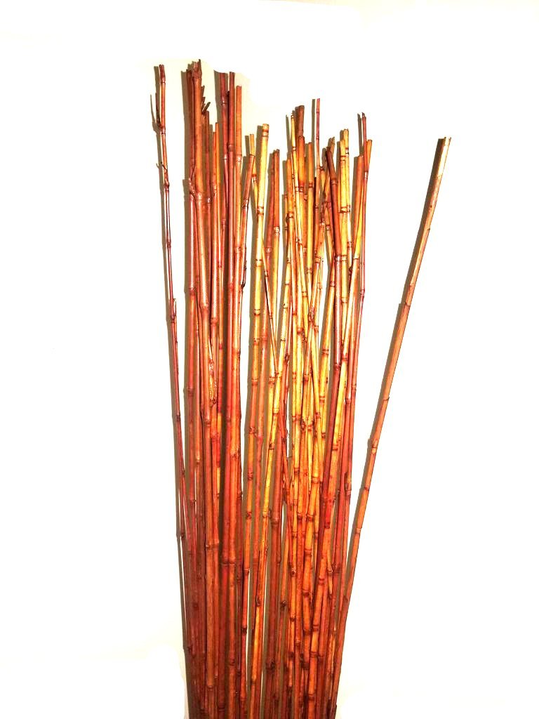 Natural Thin bamboo Stakes Over 5 Feet Tall - Pack of 20 (Natural brown)