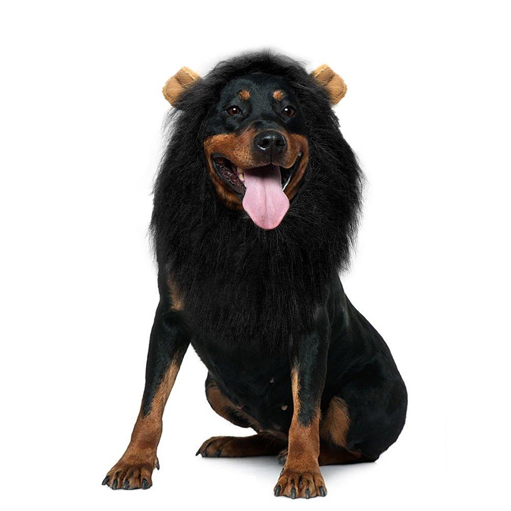 Vivifying León Mane peluca, ajustable mascota disfraz con orejas para perro (Negro): Amazon.es: Productos para mascotas