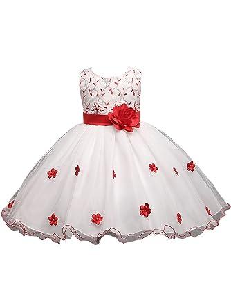 ZAMME ZAMME Mädchen-Kind-Kleid für Mädchen kleidet Blumen-Spitze ...