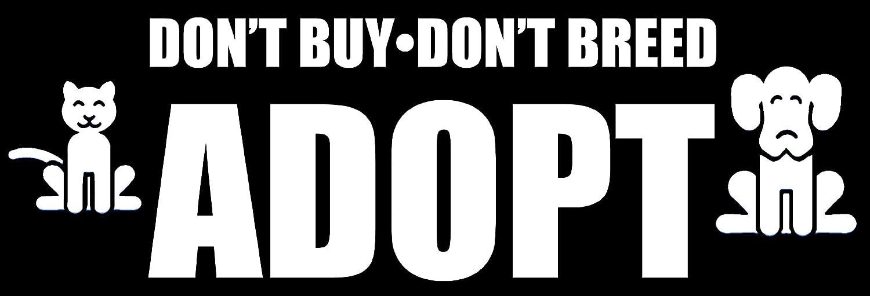 Adopt Bumper Sticker American Vinyl Dont Buy Dont Breed Dog cat Love Rescue peta