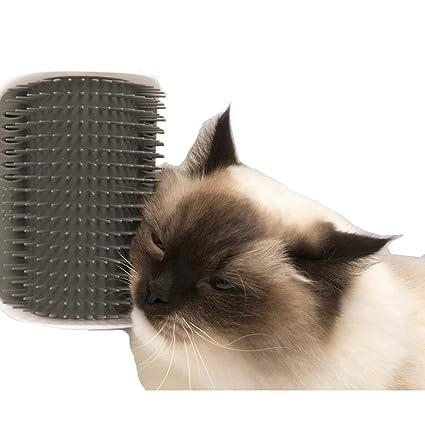 SWONVI Cat Catnip Toy Cat Corner Groomer Massage Brush for Cats with Long & Short Fur