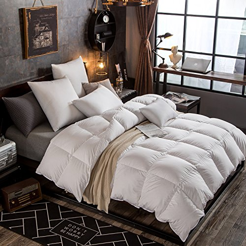 Globon Fusion Lavender Scented White Down Comforter Queen Size (90-Inch-by-90-Inch) 50oz, 300 Thread Count, 600 Fill Power,White, Nature to (Provence Queen Bed)