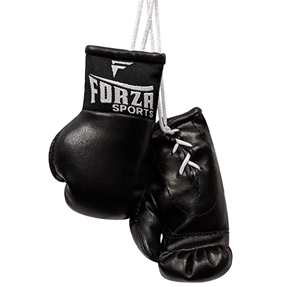 Amazon.com: Forza Sports Mini - Guantes de boxeo, talla ...