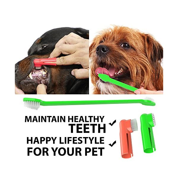 Dog Toothpaste and Toothbrush Set [REMOVES FOOD DEBRIS] Double Sided with Long Curved Handle [SUPER EASY CLEANING] - Best Soft Silicone Pet Toothbrush for Cats And Dogs [EXPANDABLE FINGER ENTRY] - Col 8