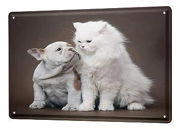 Amazon.com: Cartel de chapa decoración perro cachorros de ...