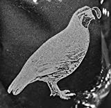 Muddy Creek Reflection Quail Bird Laser Etched Glassware Set (2, CC)