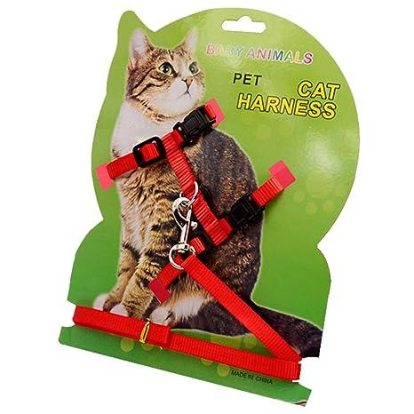 Amazon.com: Arnés de nailon para gatos rápido y ajustable ...
