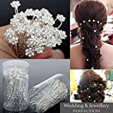 Generic Women's Crystal and Rhinestone Flower Hairpins Hair Clips (LAC162, White, 12)