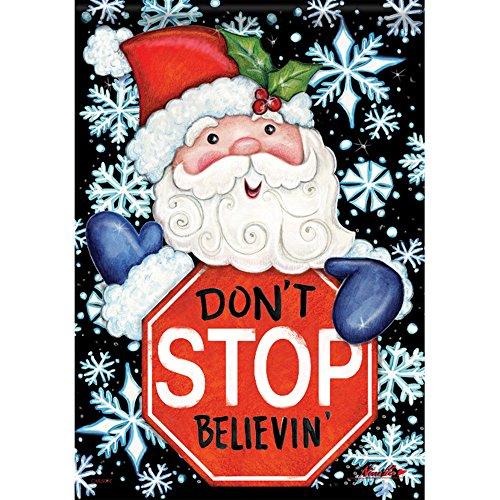 Believin Christmas Decorative Outdoor Garden product image