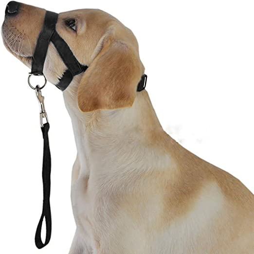 HYHY-O Dogalter - Arnés de Cabeza Halter para Perro, Color Negro ...