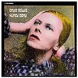 Hunky Dory Gold Vinyl