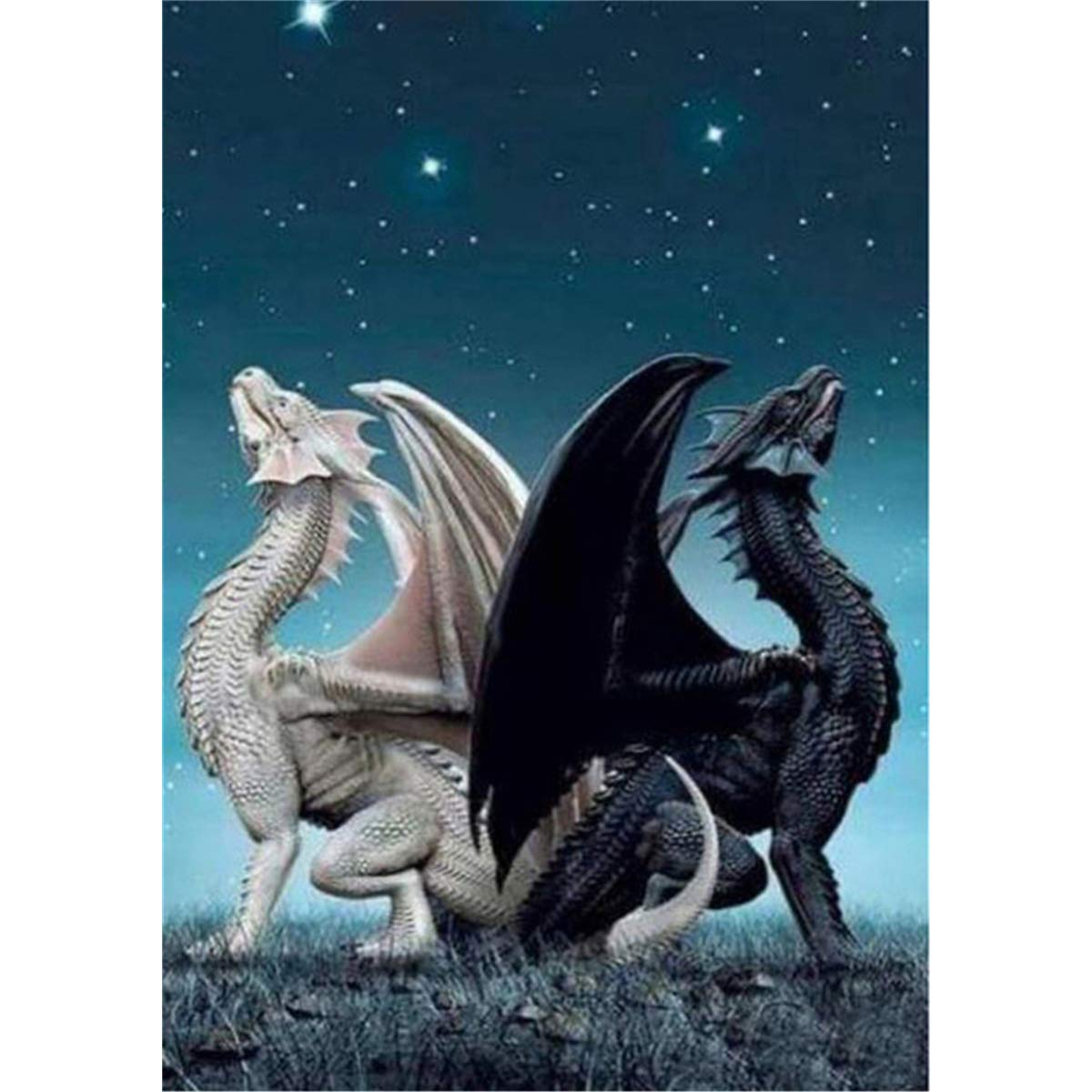 5D Diamond Painting Full Drill, Dragon Diamond Painting Kits for Adults Kids Crystal Rhinestone DIY Arts Craft for Home Wall Decor (White Black Dragon, 11.8x15.7inch) by feilin (Image #1)