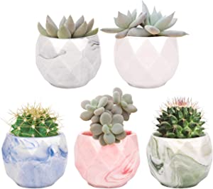 Risinginto 2.4in Mini Ceramic Small Flower Pot, 5 Pieces, Cute 5 Colors, with Drainage Holes, Marbled Glaze, Flower Pot at Home, Birthday Gift for Mom, Best Gift for Holiday