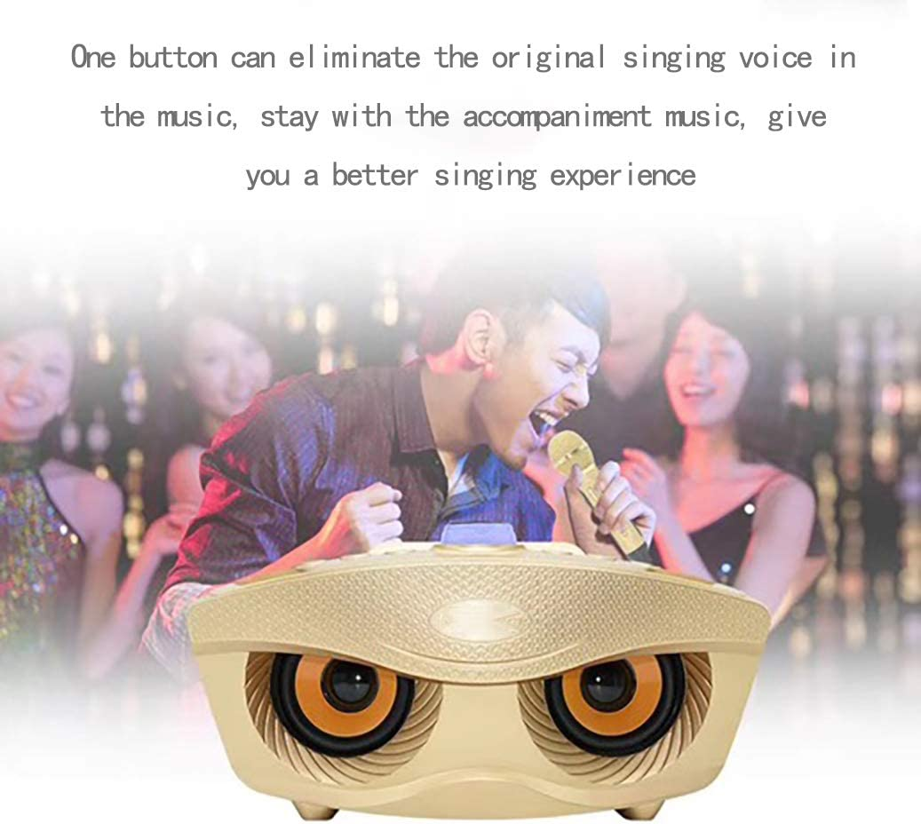 Dean Wireless Bluetooth Karaoke Microphone Portable Children Microphone Karaoke Player Speaker with LED and Music Singing Family Video KTV Kids Outdoor Birthday Party for Android PC-Pink
