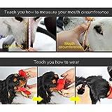 WEIYE Dog Muzzle, Adjustable Pet Dog Mouth Cover