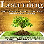 Learning: Exact Blueprint on How to Learn Faster and Remember Anything | Angel Greene