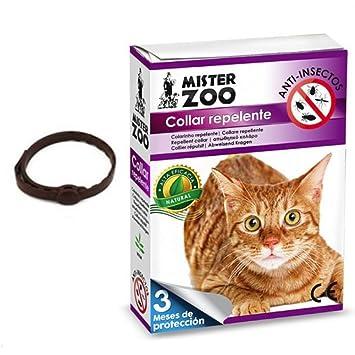 Collar repelente Pulgas Garrapatas bio-drops insectos Antiparasitario Para Gatos 3 Meses de protección garantizada Mr Zoo: Amazon.es: Productos para ...