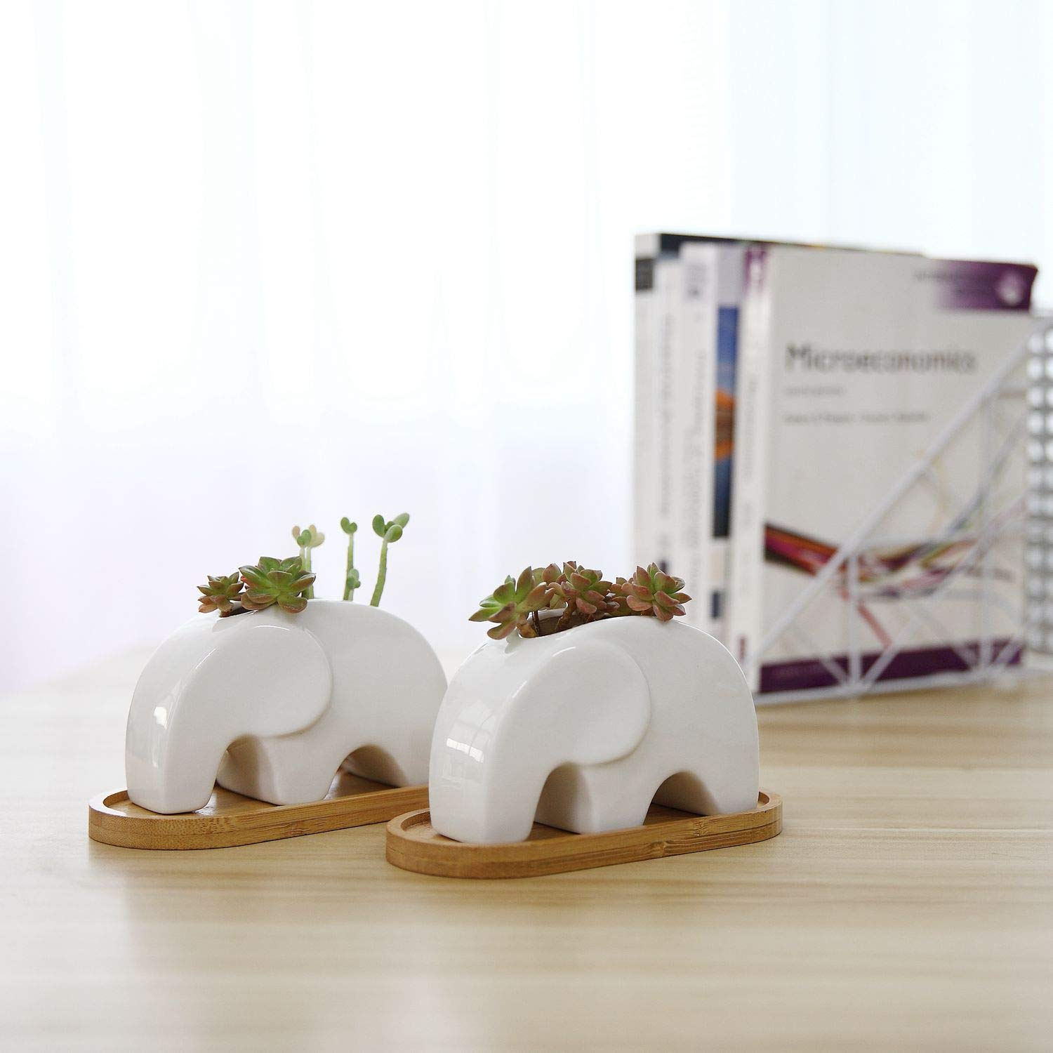 T4U Succulent Plant Pot Cactus Ceramic Planter with Bamboo Tray Pack of 2-4.8'' Elephant, Small Container White Animal Window Box Decorative Ornament Office Desktop Wedding Birthday by T4U (Image #3)