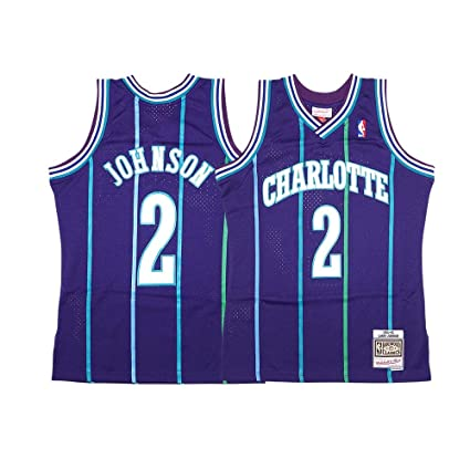 32d09e6068f Image Unavailable. Image not available for. Color: Mitchell & Ness Larry  Johnson NBA 1994-95 Charlotte Hornets Men's Purple Alt Swingman Jersey