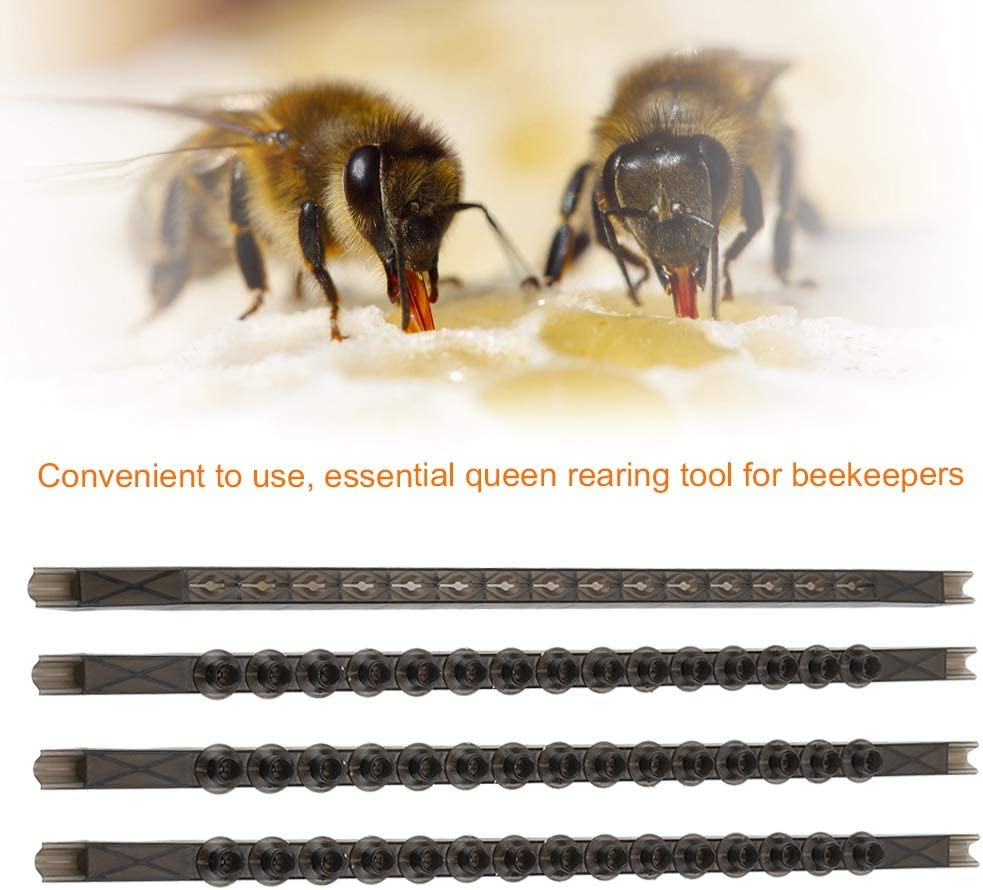 4Pcs Bee Cell Bars Beekeeping Strips with 50Pcs Cell Cups Queen Rearing Supplies-Essential Queen Rearing Tool for Beekeeping Work