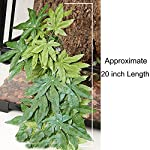 SLSON Reptile Plants Hanging Terrarium Plants Fake Reptiles Climbing Plant for Bearded Dragons,Lizards,Geckos,Snake Pets and Hermit Crab Tank Habitat Decorations,Large Size,20 inches 9