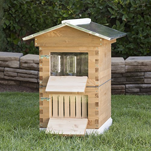 SummerHawk Ranch Honey Jar Hive - features Innovative Honey Harvesting System, Storing Honey directly in Mason Jars, Durable Backyard Bee Hive, Wooden Bee House for Beekeepers