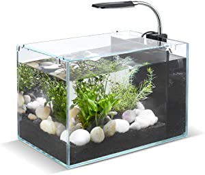 UPLY 2.6 Gallon Aquarium Kit Ultra Clear Fish Tank Low Iron Glass Aquarium Starter Kits with LED Light and Filter Pump
