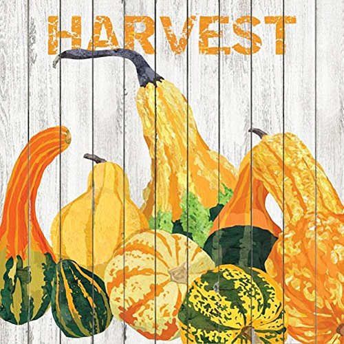 Paperproducts Design Harvest Luncheon Paper Napkins  20 Pack   6 5  X 6 5   Multicolor