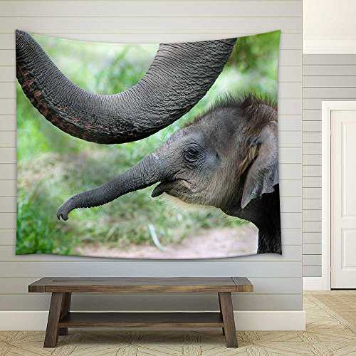 Baby Elephant Side by Side with Its Mother Fabric Wall