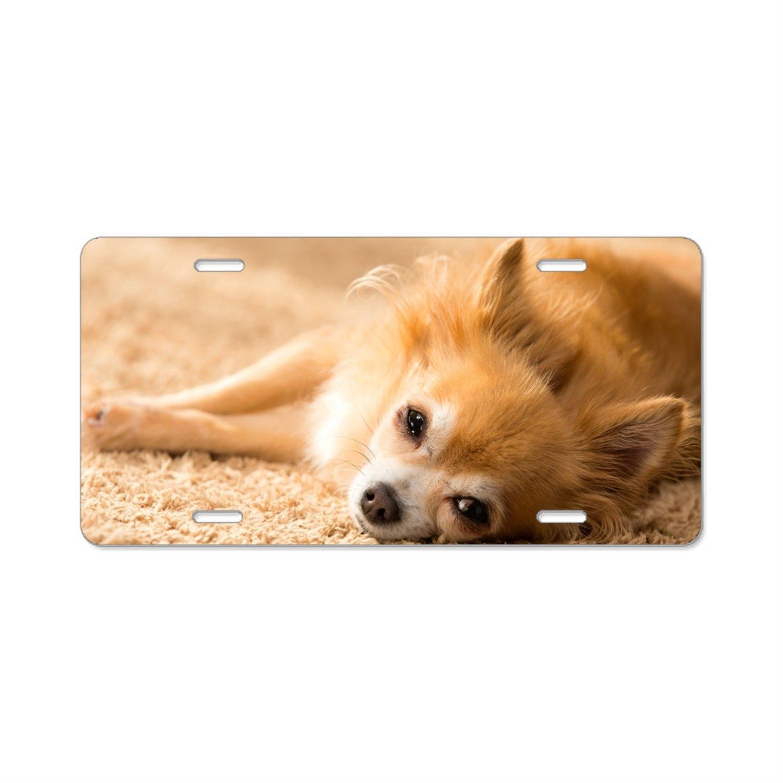 Love Pomeranian License Plate