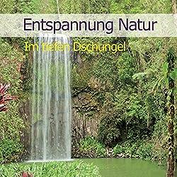 Entspannung Natur: Im tiefen Dschungel