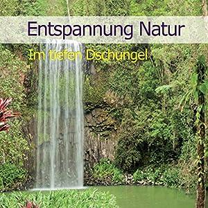 Entspannung Natur: Im tiefen Dschungel Hörbuch
