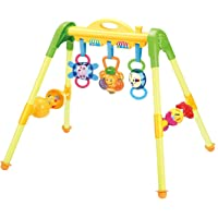Vivir Activity Play Gym with Sound Toys for Kids