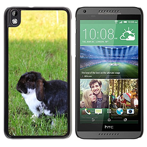 PC Hard Case Cover // M00135209 Dwarf Rabbit Garden Summer Pet // HTC Desire 816 (Garden Style Rabbit)
