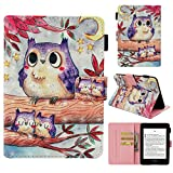 Kindle Paperwhite Case, Auto Sleep/Wake [Painted Leather] Flip Case Cover Folding Case Premium for Amazon Kindle Paperwhite (Fits all 2011,2012, 2013,2018 Versions)-Owl