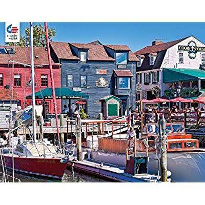 Ceaco 2396-15 Around The World Newport, RI Puzzle - 550Piece: Toys & Games