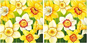 Scout and Company Daffodils Field Colorful Flower Cocktail Napkins - Cute Designer Cocktail Napkins 3-ply, 40 count - For Barware, Beverage Serviettes and Cocktail Party