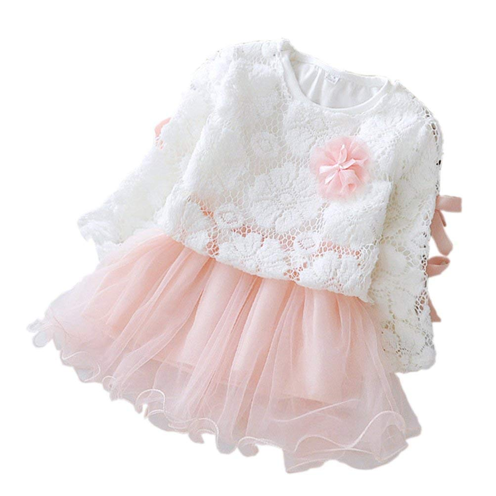 Toddler Baby Girl Long Sleeve Lace Openwork Flower Princess Dress Sets (WhiteΠnk, 3T)